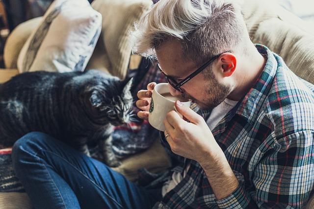 muž s kočkou na gauči.jpg