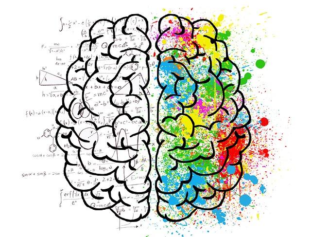 vzorce u mozku.jpg