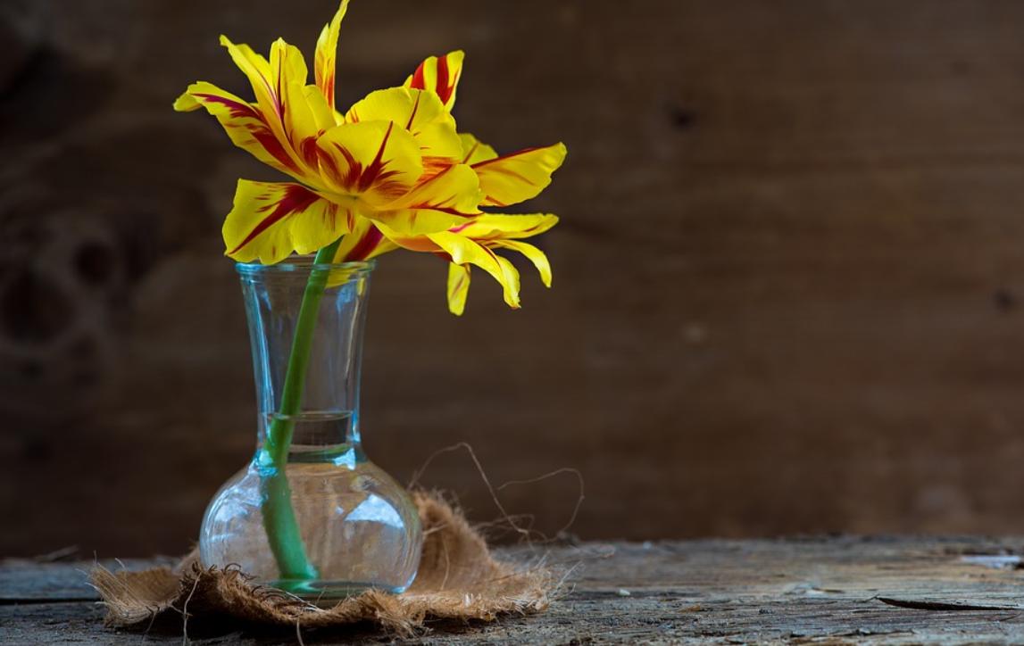 květina ve skle